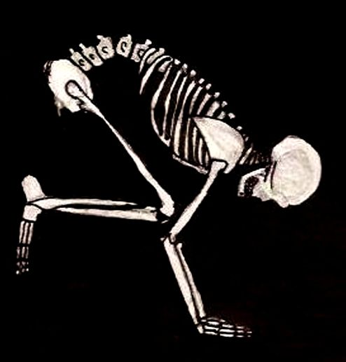 skeleton-yoga-crow