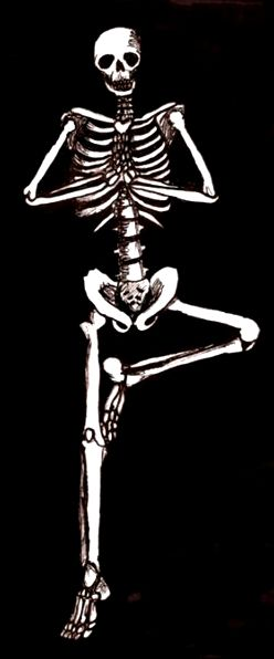 skeleton-yoga-tree