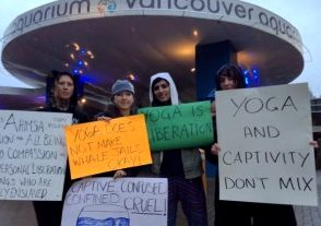 yoga-protest-whales-vancouver